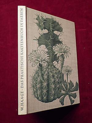 Walther Haage, Das praktische Kakteenbuch in Farben, Sukkulenten, Neumann 1961 ()