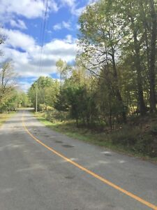 5 Acres property Indian Lake Rd, Chaffeys Locks