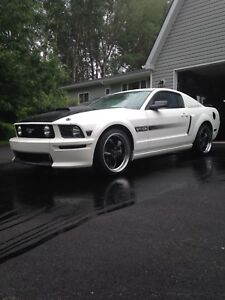 2007 Ford Mustang GTCS