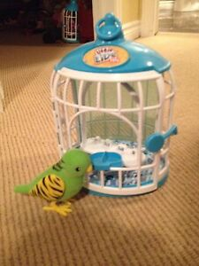 Live Pets Green talking bird with cage!