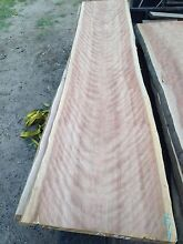 Brushbox timber slabs Newcastle 2300 Newcastle Area Preview