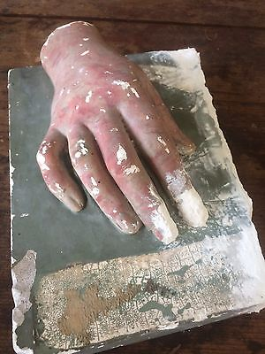 19th Century Antique Solid Plaster Hand On Plinth...curiosity..