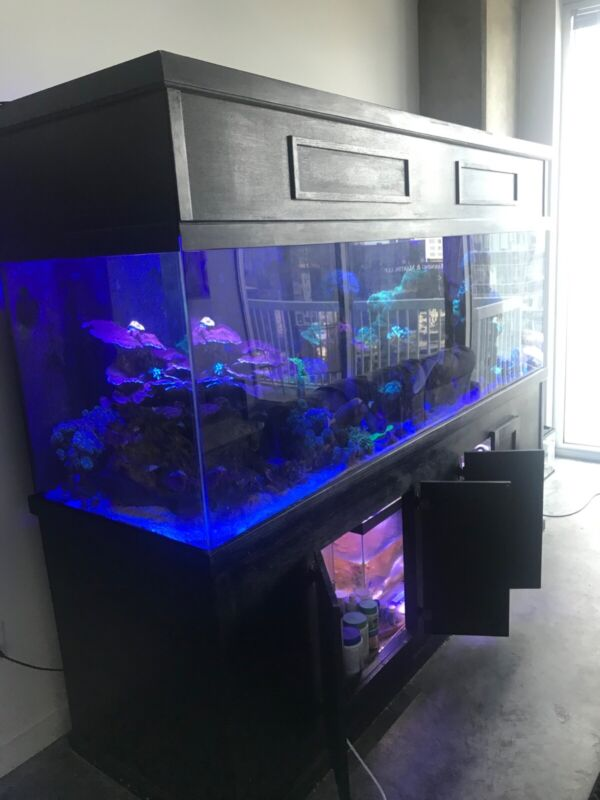 300+ Gallon Acrylic aquarium build(after order placed) standard or custom.