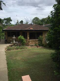 Three bedroom house at Greenslopes