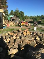 Free Firewood Wanted