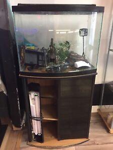 25 gallon bowfront aquarium