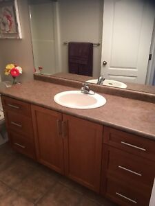 Free countertops and bathroom sinks/taps