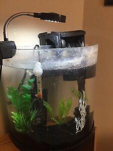 3G aquarium