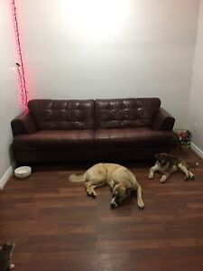 Brown leather couch - $100 IF PICKED UP THIS WEEK