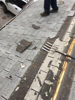 Roofing Replacement and Repair,  Roof Professional