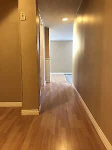 INCLUDES ALL UTILITIES - 2 Bed Lower Suite University Whyte Area