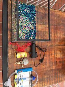 Fish tank and equipment Amaroo Gungahlin Area Preview