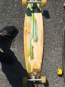 Sector 9 long board