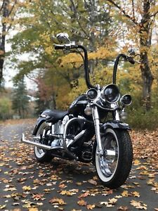 HARLEY PARTS forsale. , bags , rims/tires/ front fairing