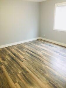 Walkout Basement apartment for rent in maple ridge