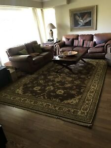 Large Decorative Brown Area Rug