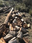 Wanted firewood logs to collect  New Norfolk Derwent Valley Preview