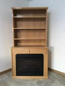 Bookshelf with fire place