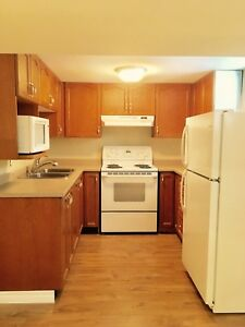 Coming soon Bright 1 Bedroom Basement in Downtown Grimsby