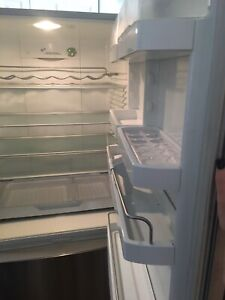 stainless steel fridge fisher & Paykel