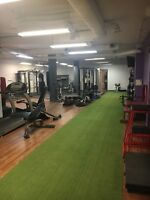 Live happier and healthier now! SA Personal Training