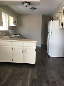 3 Bedroom Home, close to UOIT