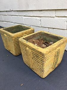 Retro Coloured Cement Pot Plants Vintage Yellow x 2 Elanora Heights Pittwater Area Preview