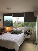 Main Room for Rent - West End 2bdrm unit West End Brisbane South West Preview