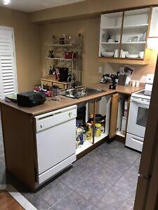 Entire Kitchen