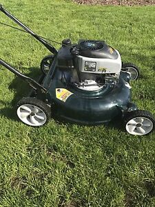 Buy Or Sell A Lawnmower Or Leaf Blower In Guelph Garden