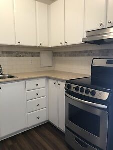 Spacious Fully Renovated 2 Bedroom Apartment - September 1st!