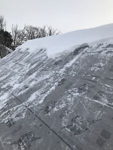 Shingles or siding blow off?