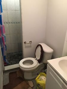 1 bedroom walkout basement near Humber College