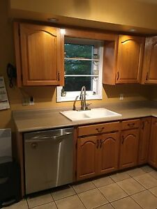Kitchen cabinets/countertop