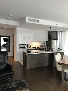 Luxury-Modern Furnished Condo For Rent  (Temporary 4-6 months)