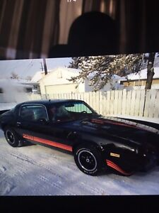 1980 z28. Only 130000 kms
