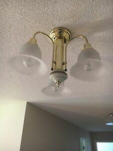 Chandelier and wall sconces
