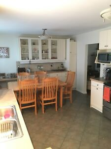 Modern 3 Bedroom with Fenced Yard- Includes H an H