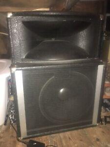 Peavy extension speaker/ pa speaker