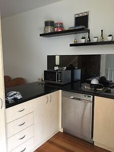 Looking for a female housemate (hawthorn) $250 Richmond Yarra Area Preview