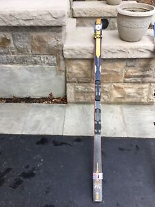 GS Race Skis for sale (2 Pairs of GS Skies - 195cms and 188cms)