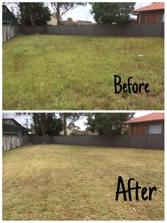 Cheap Lawn Mowing and Trimming Service