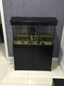 3ft tank & cabinet Bexley Rockdale Area Preview