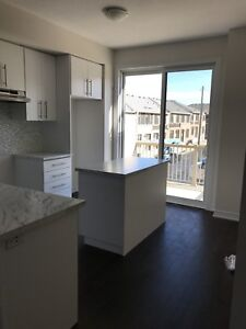 Brand New 3-Bed Townhouse Immediately Avail. 4 Lease in Hamilton