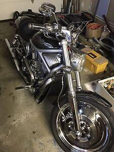 Harley davidvdson Vrod 2004