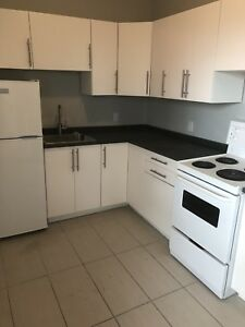 1 bedroom rental - Cannon and Ottawa