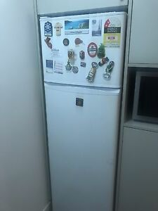 Fisher & Paykel Fridge Manly Manly Area Preview