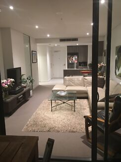 Large Room for rent Newstead
