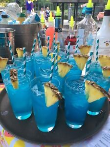 Need a bartender for your party or wedding?