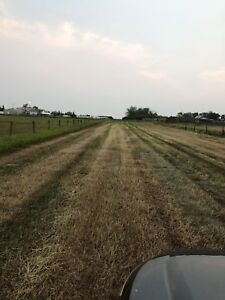 20 Acres Land for Rent